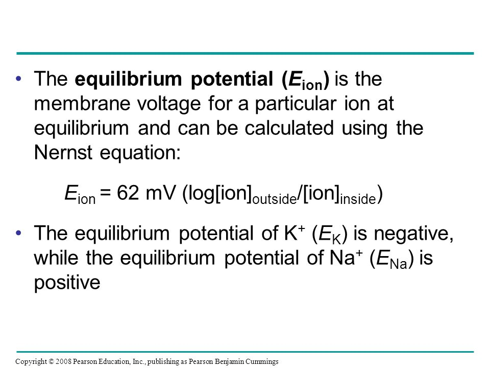 The equilibrium potential (Eion) is the membrane voltage for a particular ion at equilibrium and can be calculated using the Nernst equation: