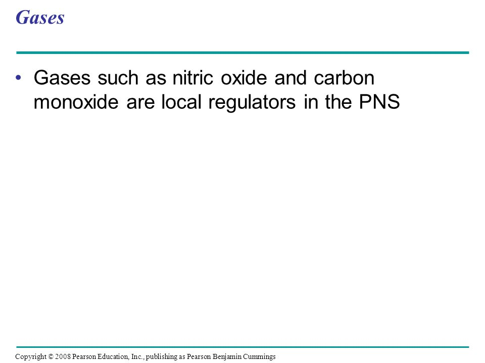 Gases Gases such as nitric oxide and carbon monoxide are local regulators in the PNS