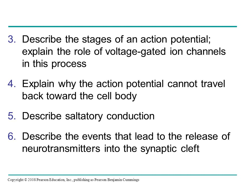 Describe the stages of an action potential; explain the role of voltage-gated ion channels in this process