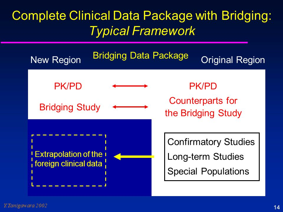 Complete Clinical Data Package with Bridging: Typical Framework