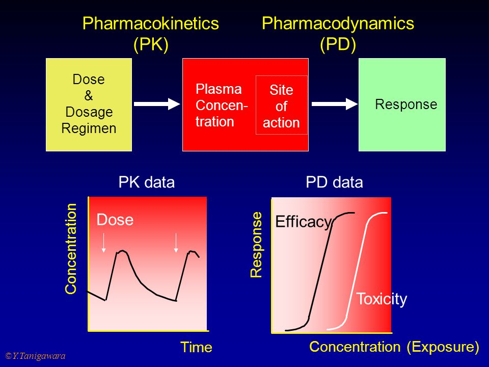 Pharmacokinetics (PK) Pharmacodynamics (PD) Dose PK data PD data