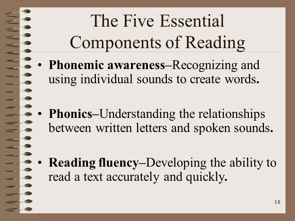 The Five Essential Components of Reading