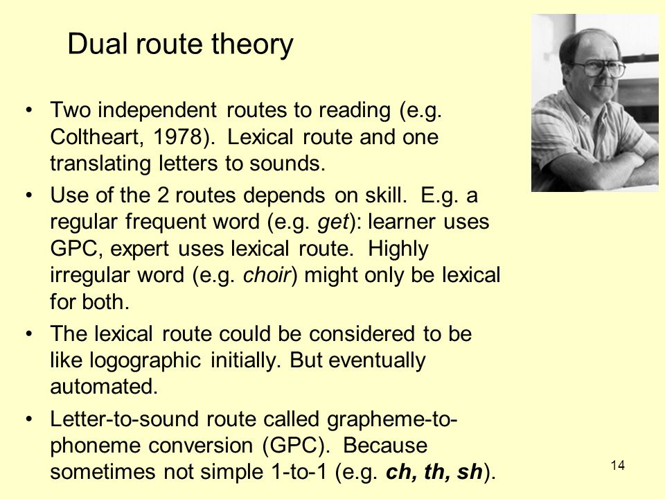 Dual route theory Two independent routes to reading (e.g. Coltheart, 1978). Lexical route and one translating letters to sounds.