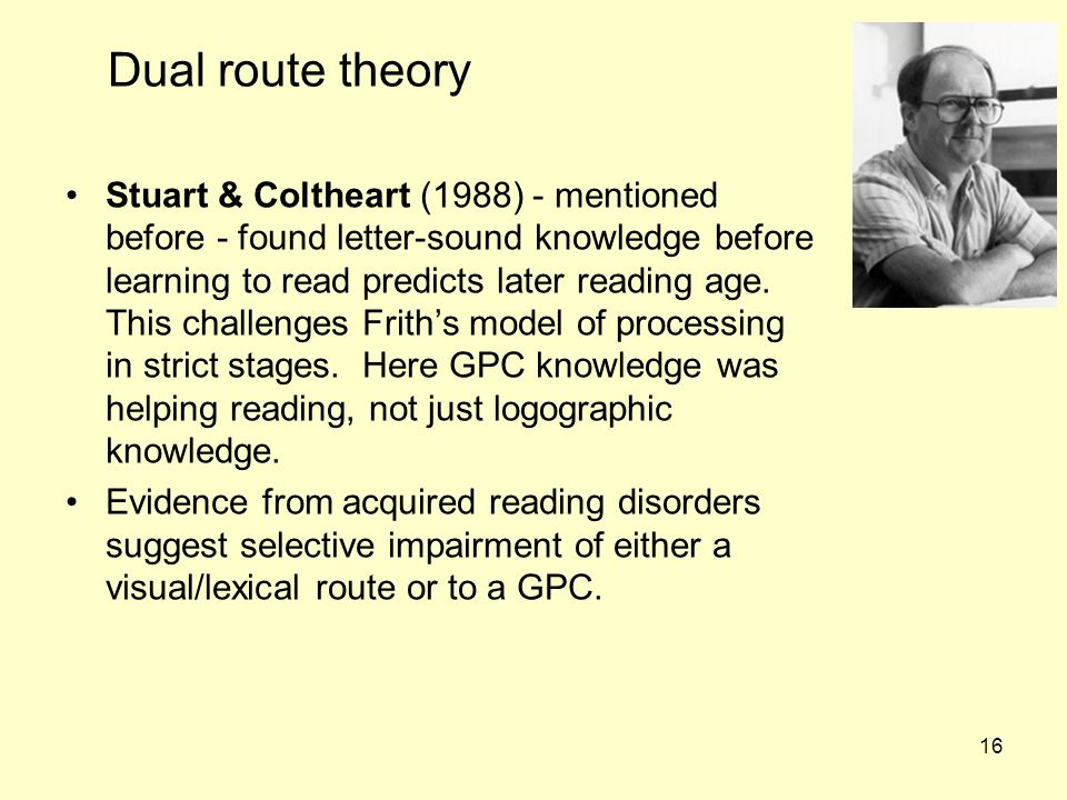 Dual route theory