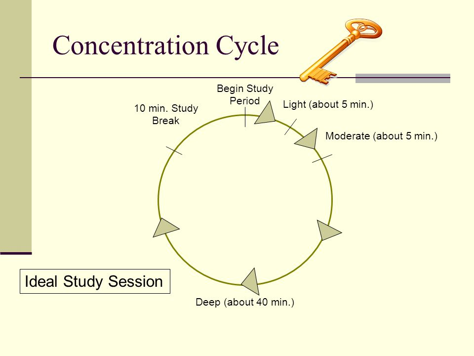 Concentration Cycle Ideal Study Session Begin Study Period