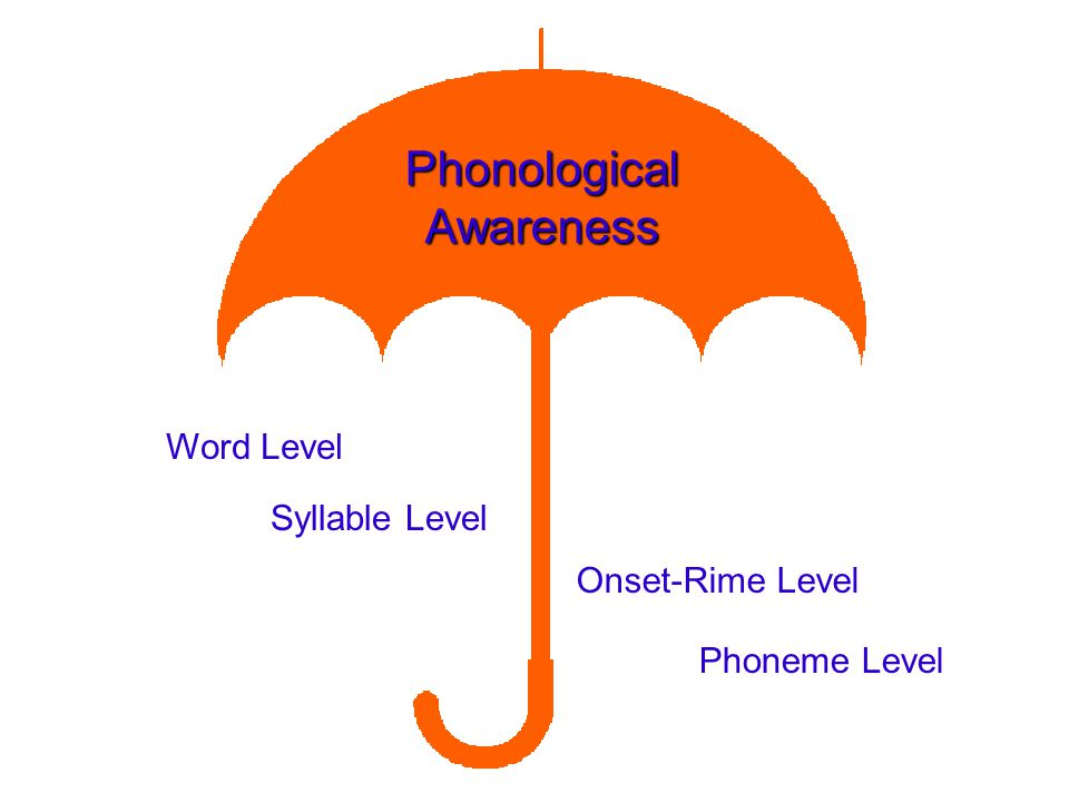 Phonological Awareness Word Level Syllable Level Onset-Rime Level