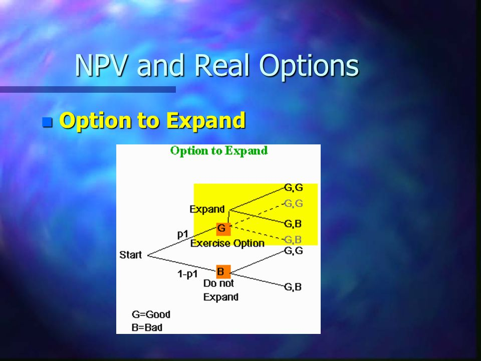 NPV and Real Options Option to Expand