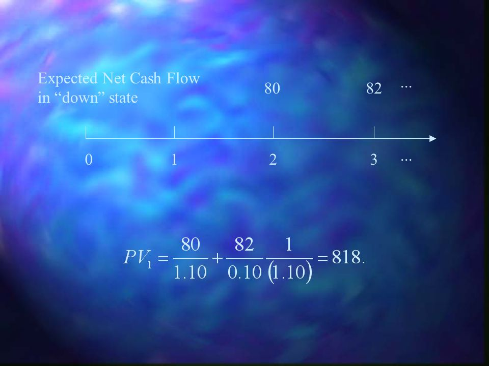 Expected Net Cash Flow in down state ... 80 82 ... 1 2 3