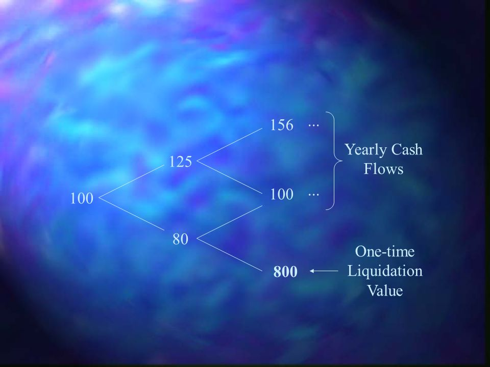 ... 156 Yearly Cash Flows 125 ... 100 100 80 One-time Liquidation Value 800