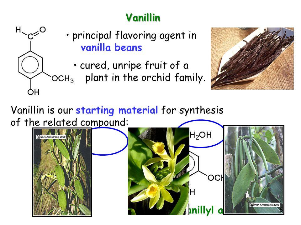 principal flavoring agent in vanilla beans