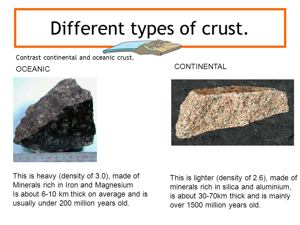 Different types of crust.
