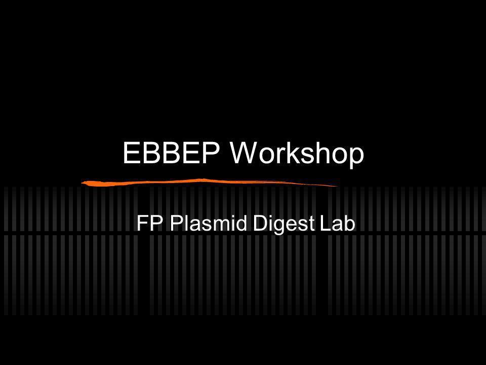 EBBEP Workshop FP Plasmid Digest Lab