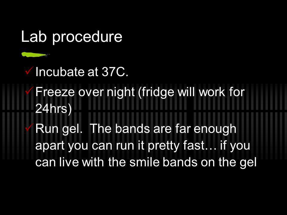Lab procedure Incubate at 37C.
