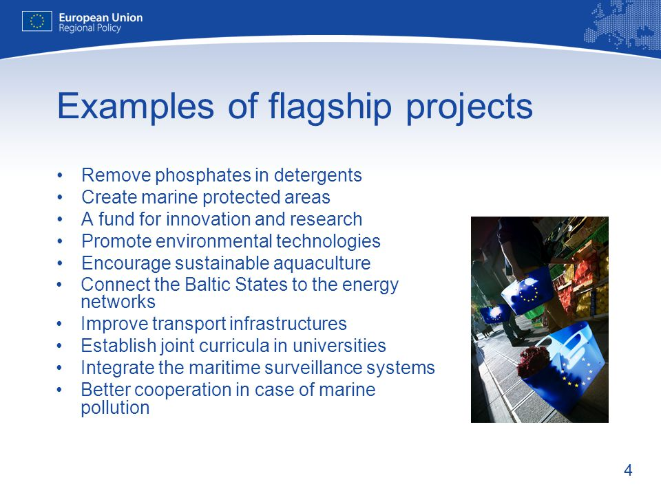 Examples of flagship projects