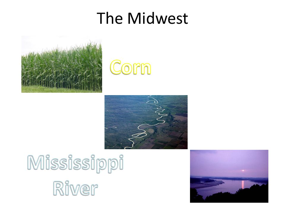 Corn Mississippi River