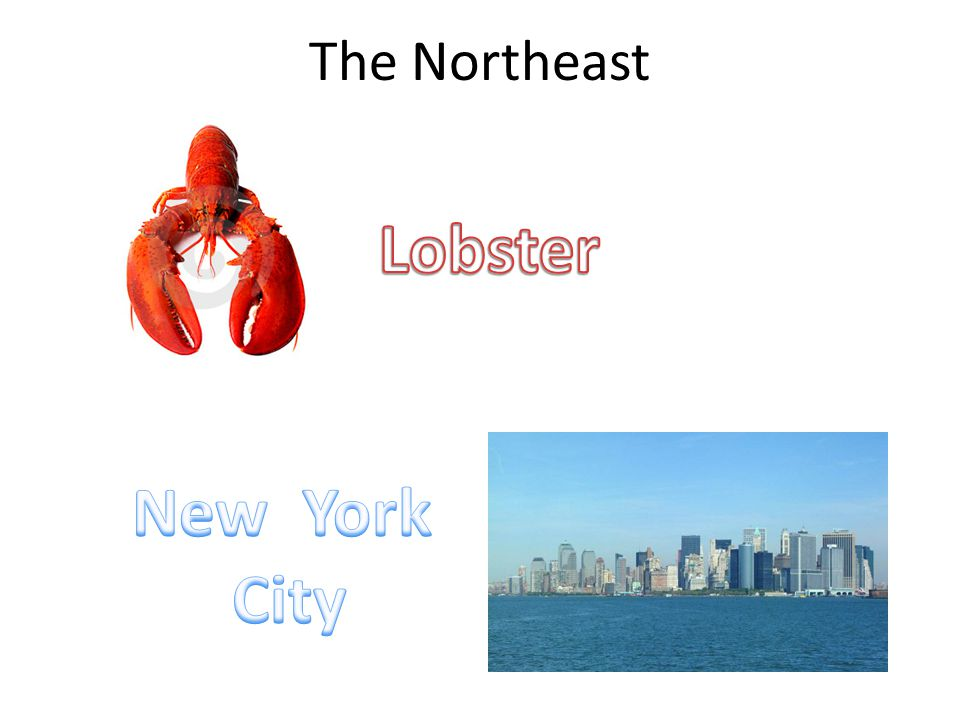 The Northeast Lobster New York City