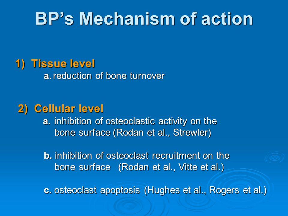 BP's Mechanism of action