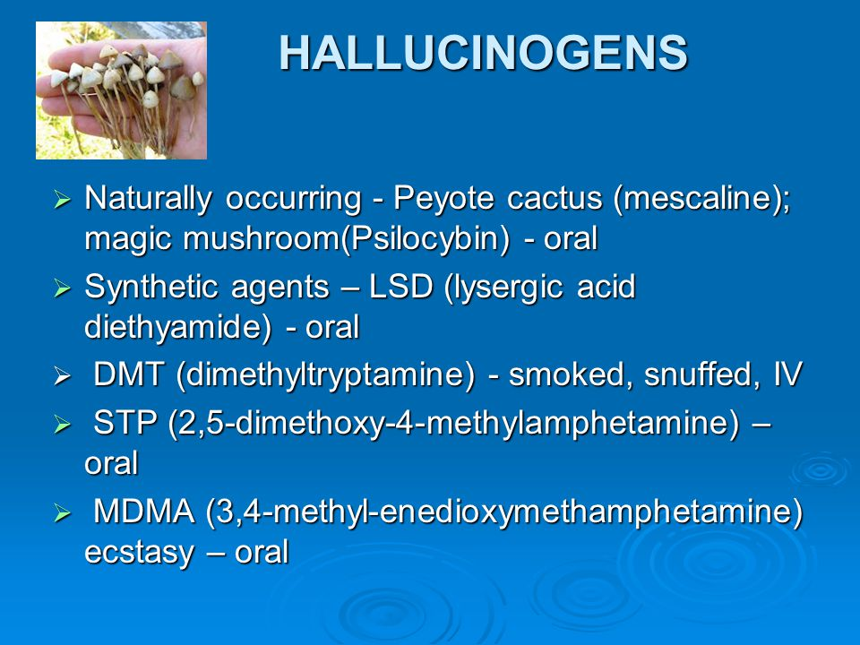 HALLUCINOGENS Naturally occurring - Peyote cactus (mescaline); magic mushroom(Psilocybin) - oral.