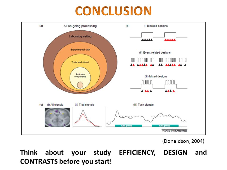 CONCLUSION (Donaldson, 2004) Think about your study EFFICIENCY, DESIGN and CONTRASTS before you start!
