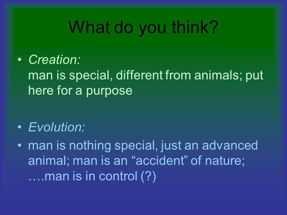 What do you think Creation: man is special, different from animals; put here for a purpose. Evolution: