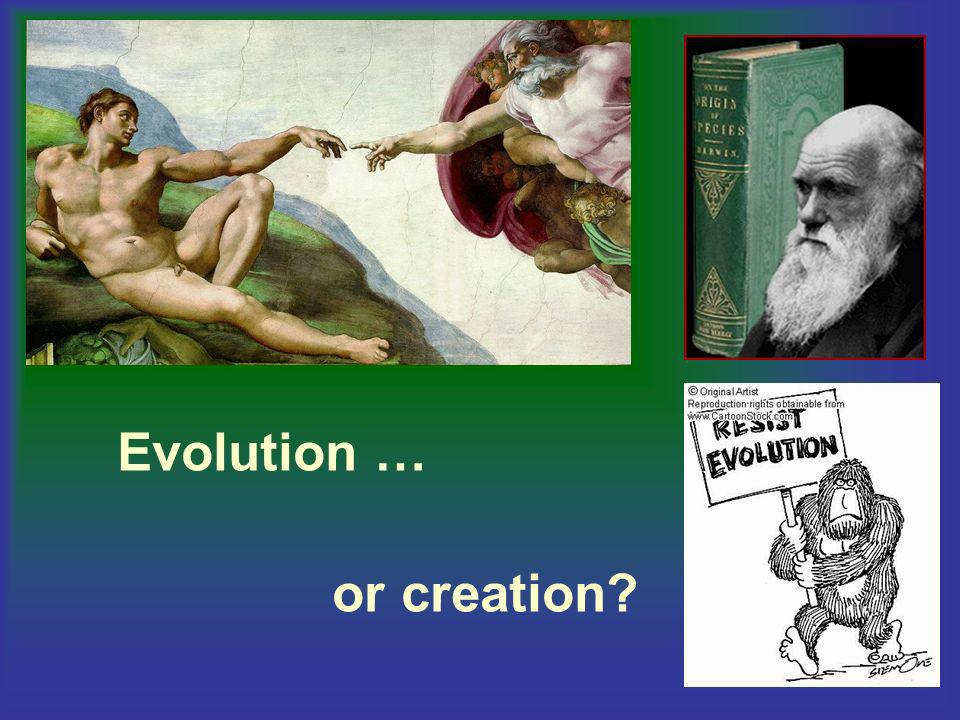 Evolution … or creation