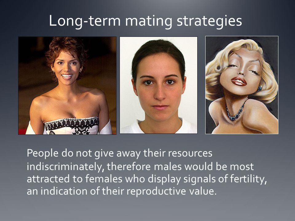 Long-term mating strategies