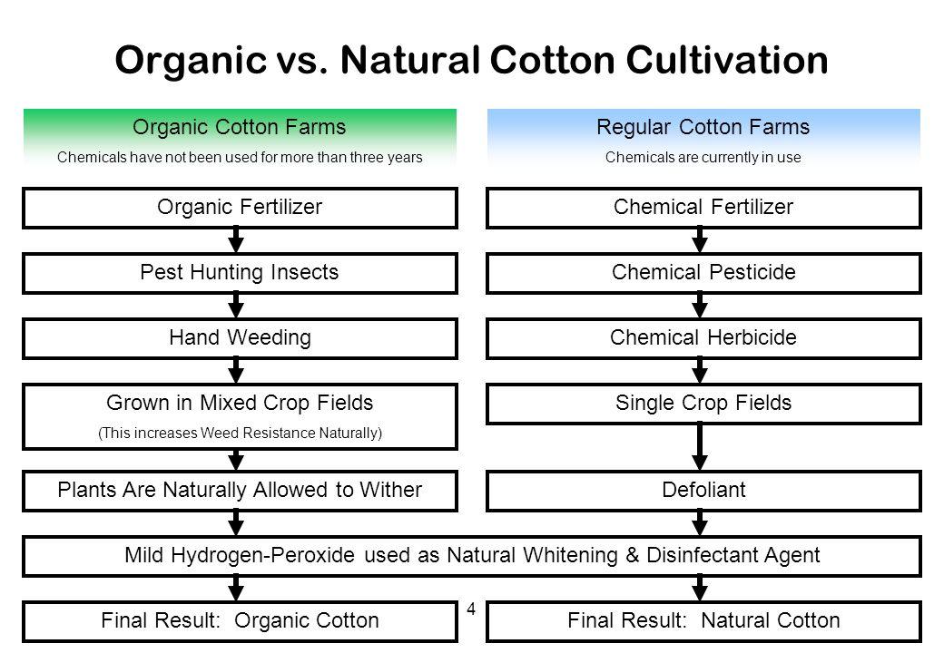 Organic vs. Natural Cotton Cultivation