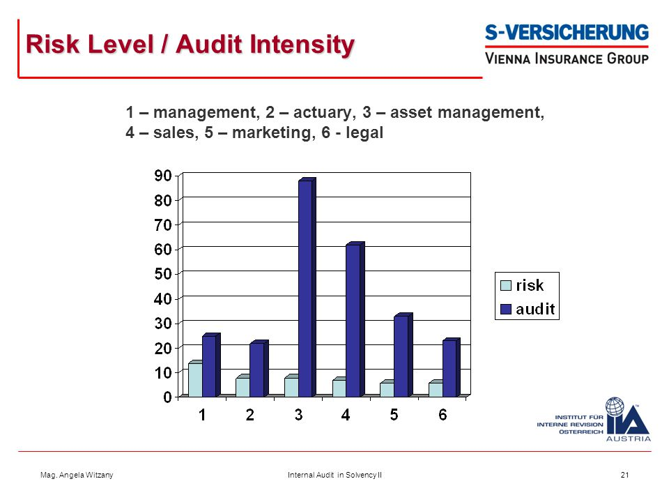 Risk Level / Audit Intensity