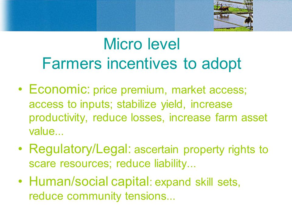 Micro level Farmers incentives to adopt