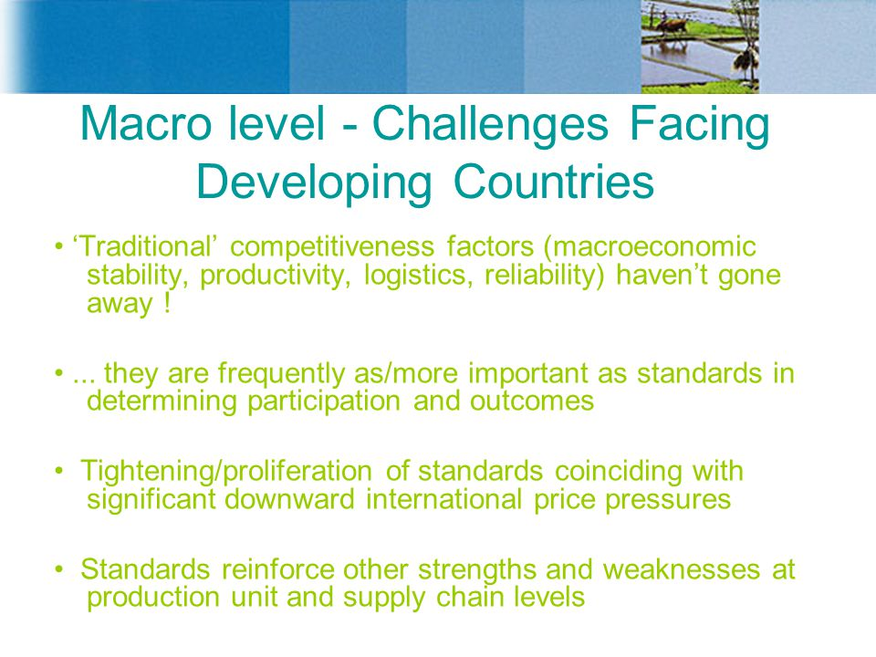 Macro level - Challenges Facing Developing Countries