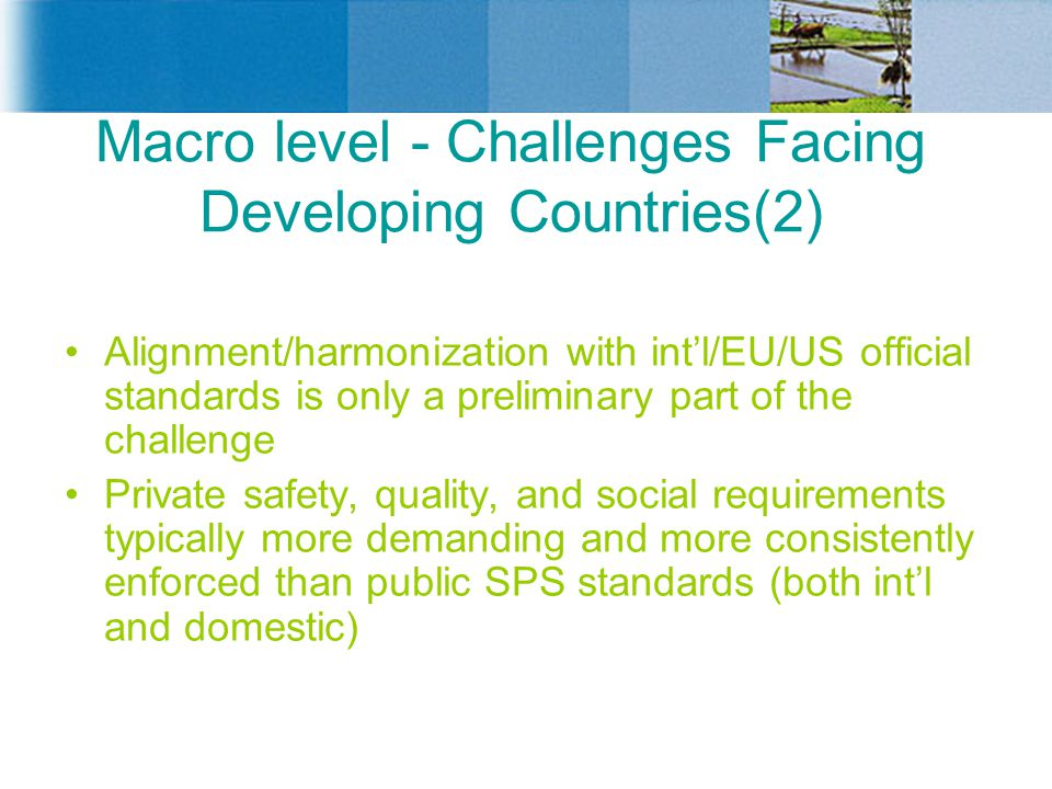 Macro level - Challenges Facing Developing Countries(2)