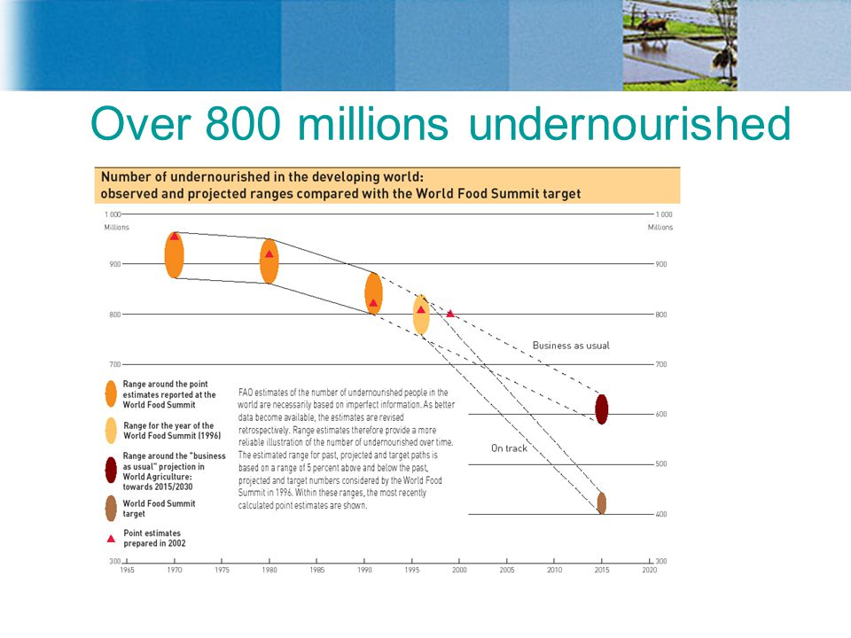 Over 800 millions undernourished