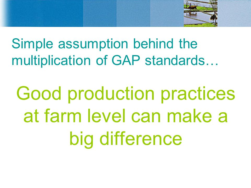 Simple assumption behind the multiplication of GAP standards…