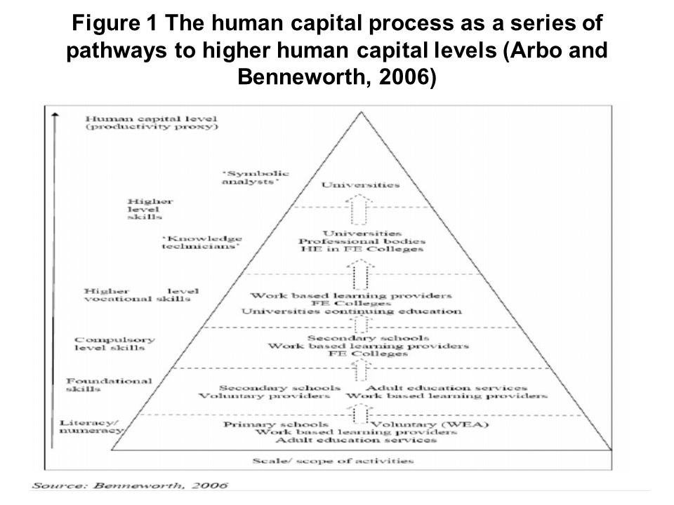 Figure 1 The human capital process as a series of pathways to higher human capital levels (Arbo and Benneworth, 2006)