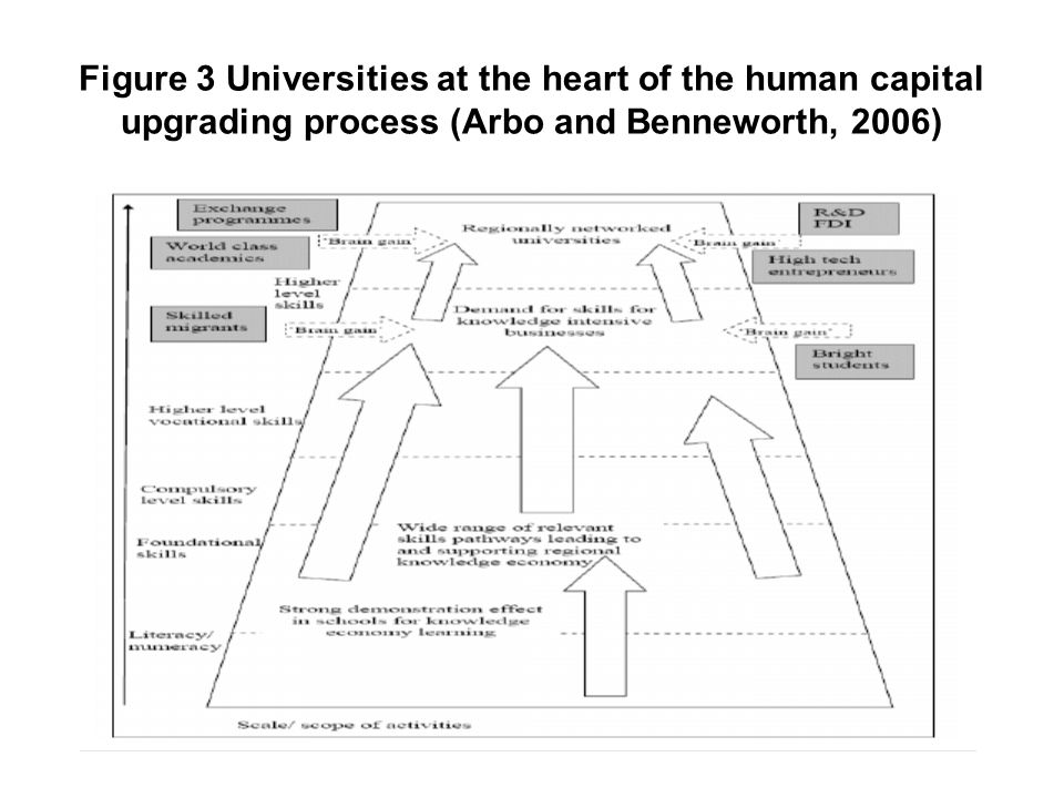 Figure 3 Universities at the heart of the human capital upgrading process (Arbo and Benneworth, 2006)