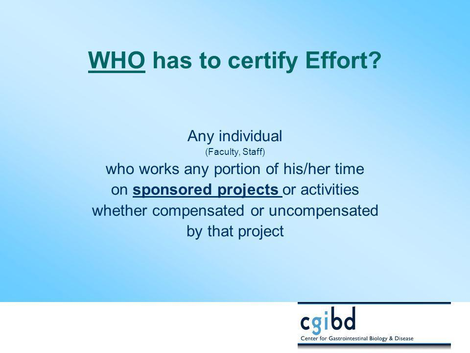 WHO has to certify Effort
