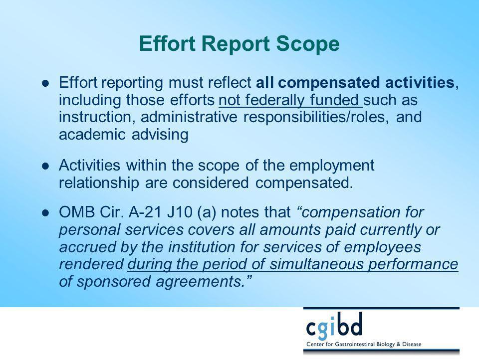 Effort Report Scope