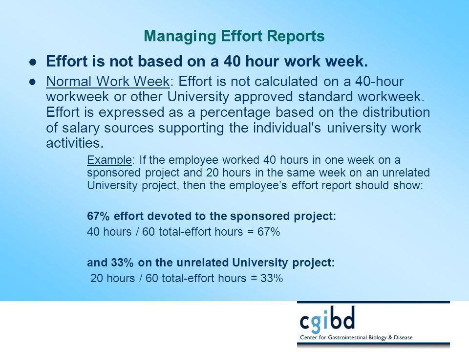 Managing Effort Reports