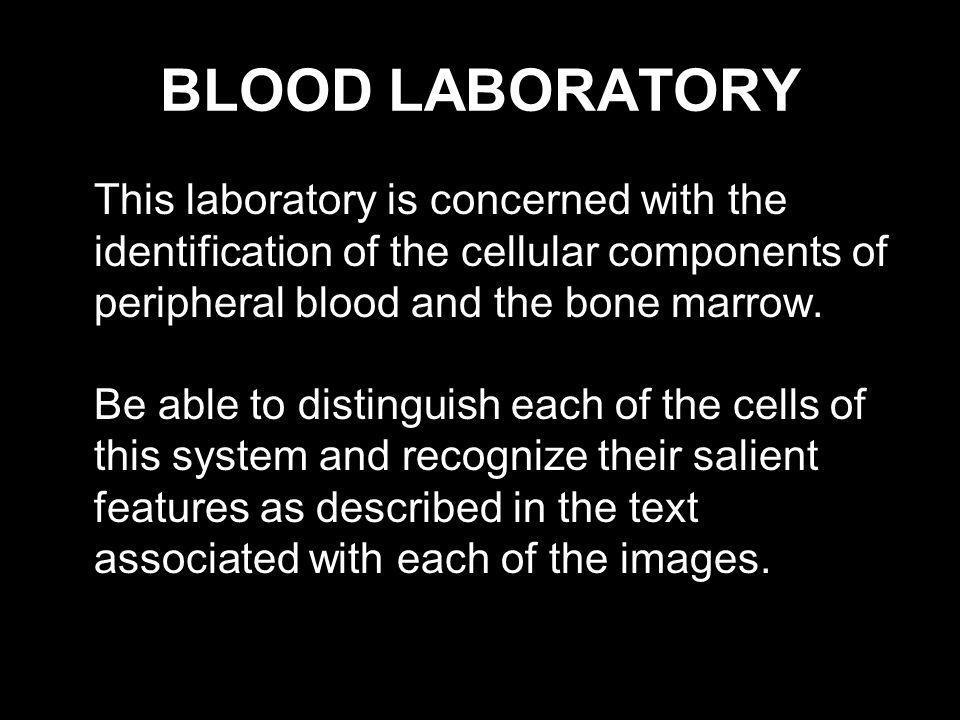 BLOOD LABORATORY