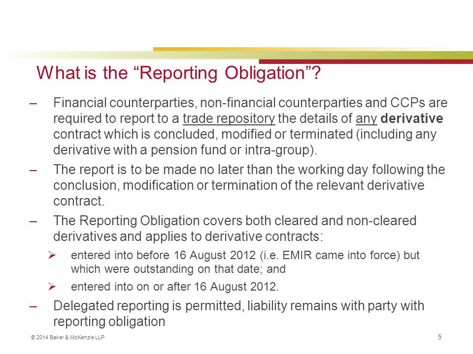 What is the Reporting Obligation