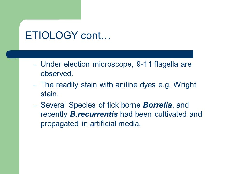 ETIOLOGY cont… Under election microscope, 9-11 flagella are observed.