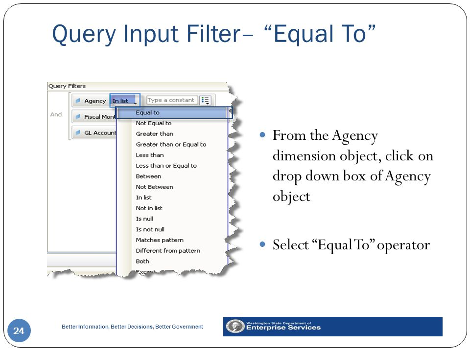 Query Input Filter– Equal To