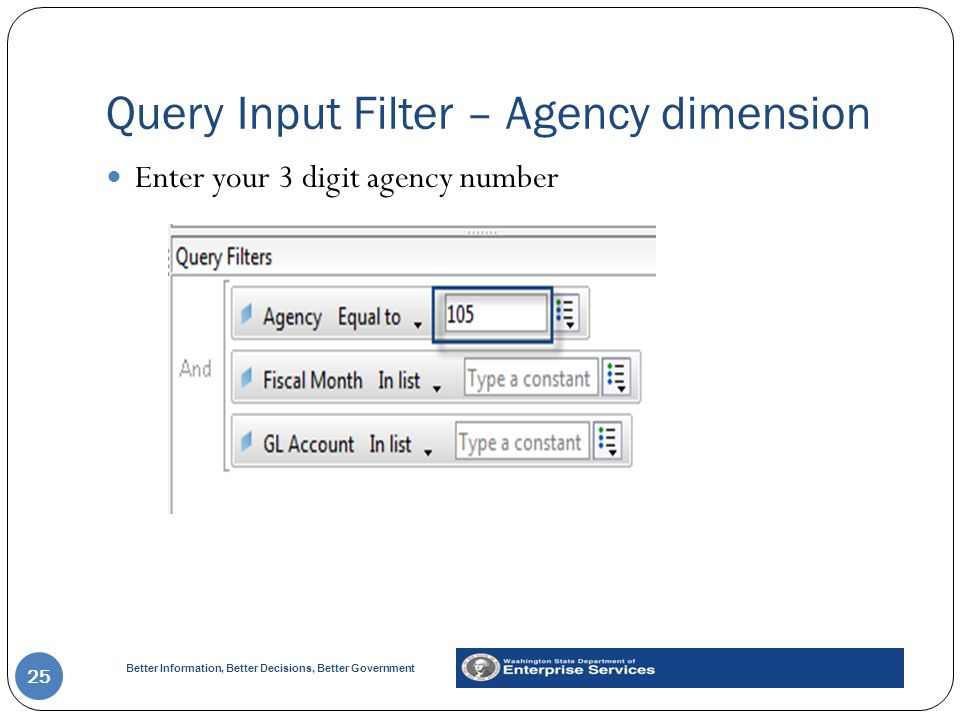 Query Input Filter – Agency dimension