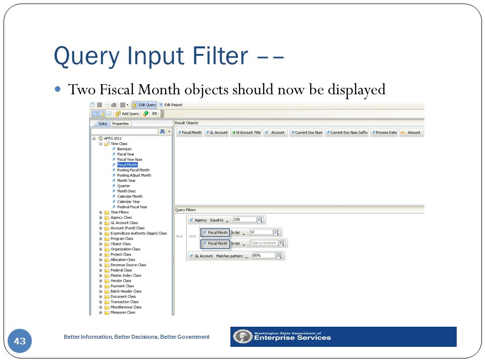 Query Input Filter –– Two Fiscal Month objects should now be displayed