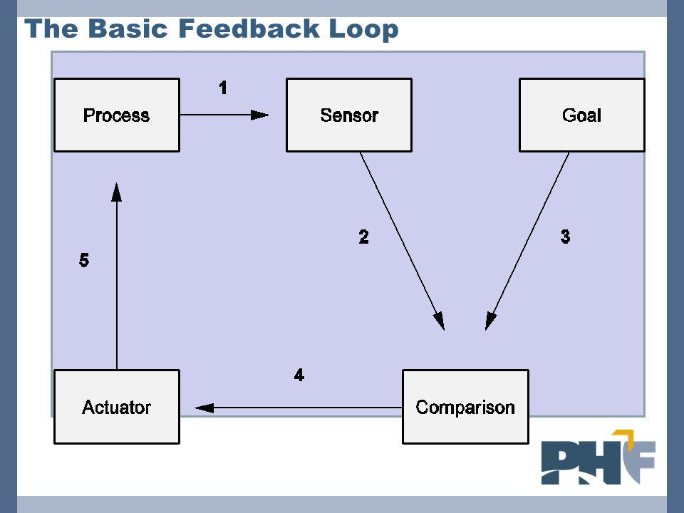 The Basic Feedback Loop
