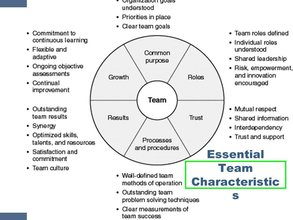 Essential Team Characteristics