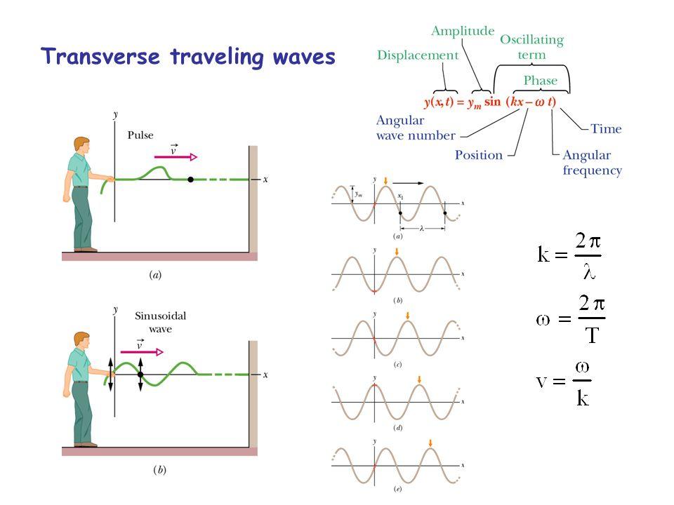 Transverse traveling waves