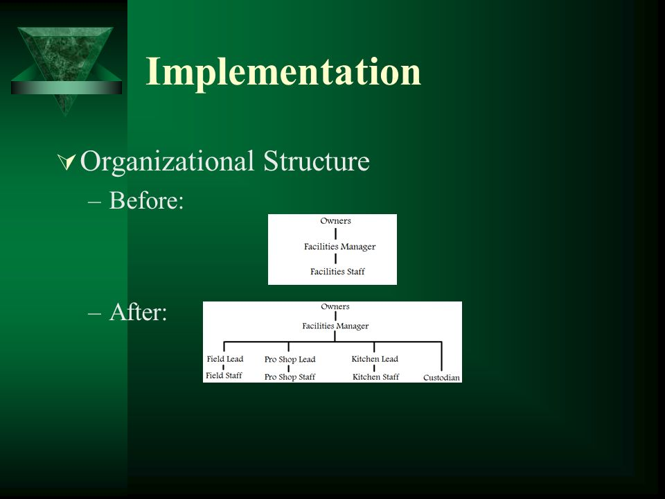 Implementation Organizational Structure Before: After: