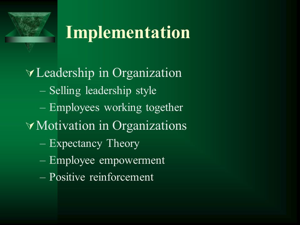 Implementation Leadership in Organization Motivation in Organizations
