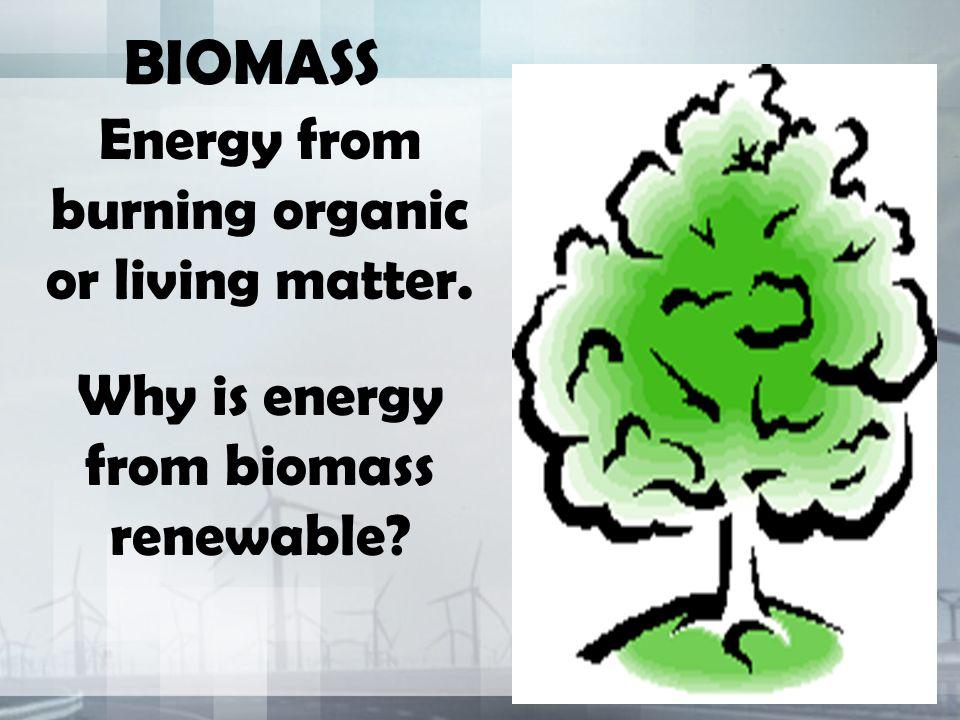 BIOMASS Energy from burning organic or living matter.